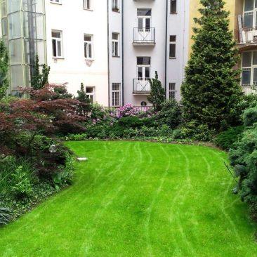 Rekonstrukce střešní zahrady Praha 6
